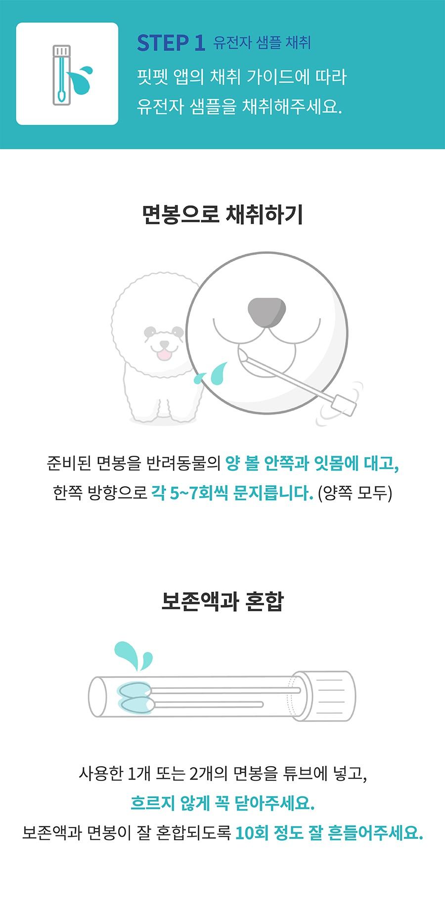 핏펫 어헤드 진 유전병 검사 키트-상품이미지-6
